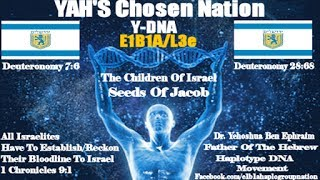 23AndMe Changed Format 2 Confuse Us/E1B1A- The True Israelites