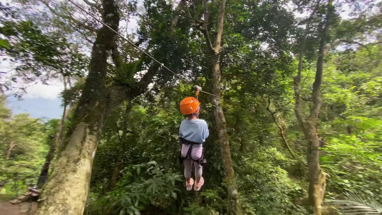 野猴子探險森林-5 自己溜 - YouTube