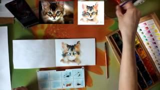 """Мастер-класс #14 Картина акварелью """"Котик""""."""