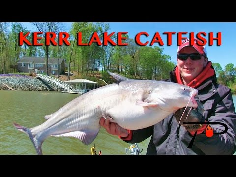 Kerr Lake (Buggs Lake) Catfish Fishing