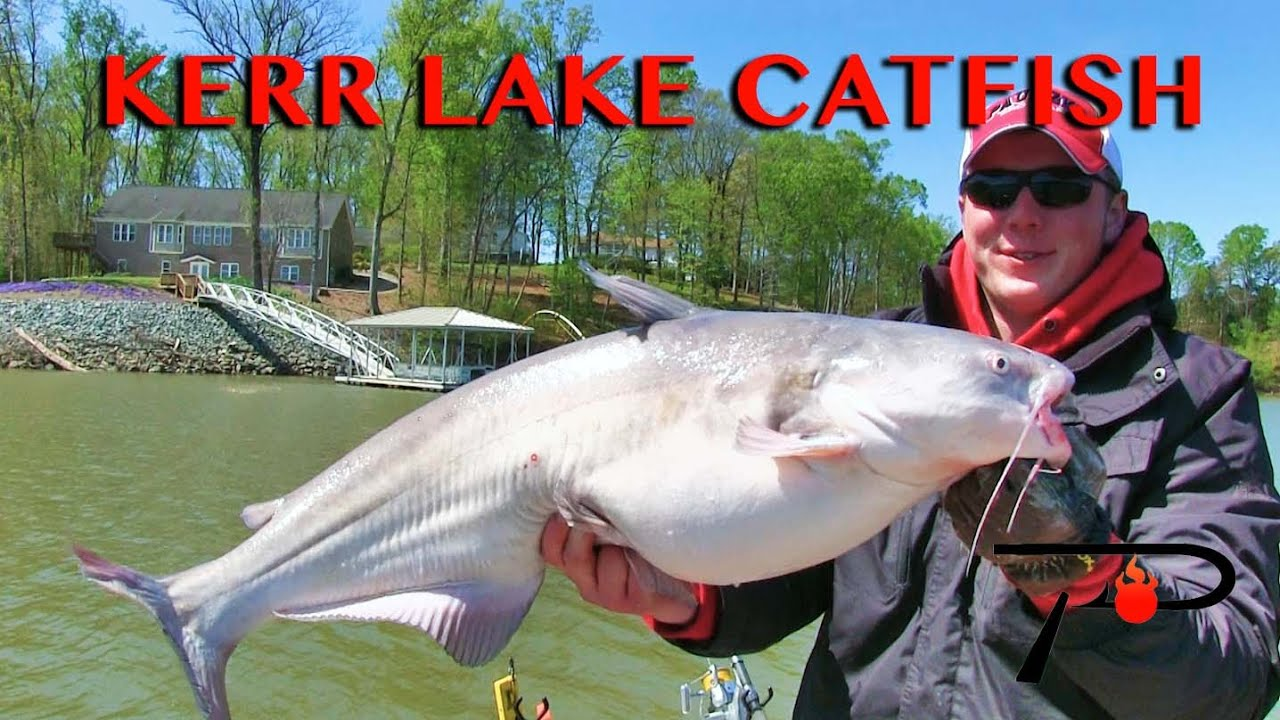 Kerr lake buggs lake catfish fishing youtube for Kerr lake fishing hot spots