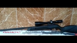 Rifle Gamo Whisper IGT Raptor 177.