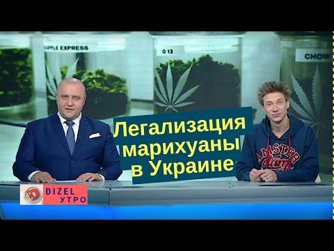 Смотреть Кого в Украине будут лечить марихуаной? | Дизель новости онлайн