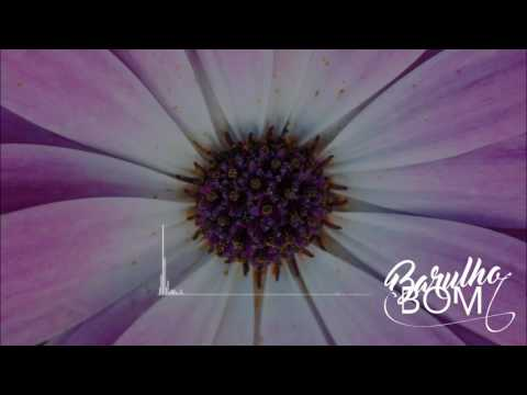 Handbook - Bird (Remix)
