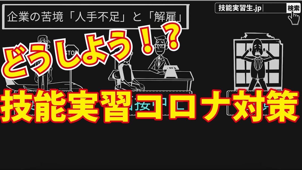 【5分で解説】コロナ対策篇|アニメで解説分かりやすい技能実習シリーズ