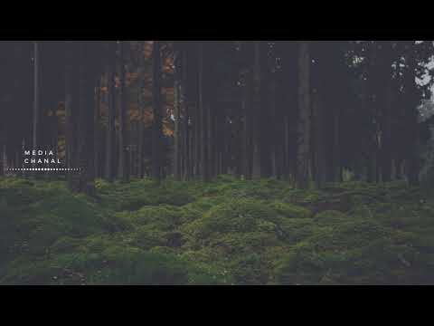 Chillstep vol.1 | Chill | Deep | 1 hour | 2018