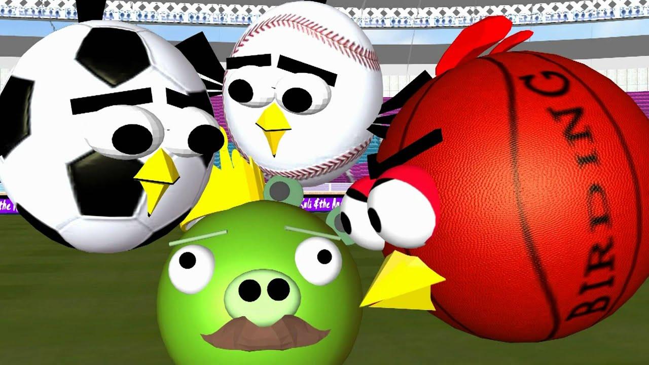 Bird Games