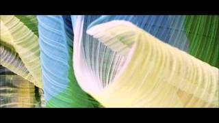 Roman Flügel - Softice
