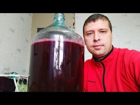 Черноплодная рябина вино в домашних условиях пошагово
