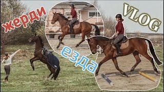 VLOG: работа на жердях/день из жизни конника|Почему не снимала влоги?