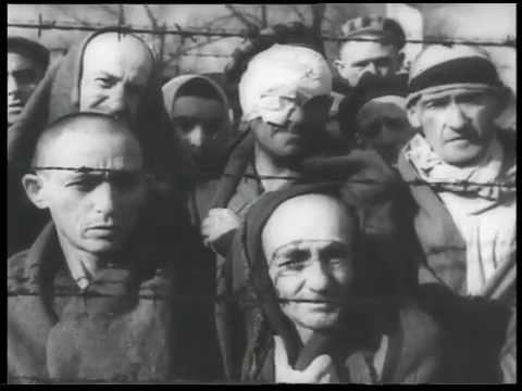 Концлагерь /Concentration camp