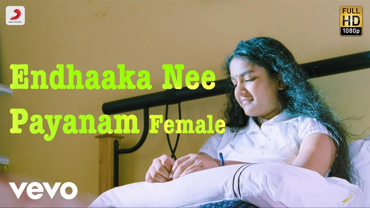 Dhoni - Endhaaka Nee Payanam Female Telugu Lyric | Ilayaraja | Prakash Raj