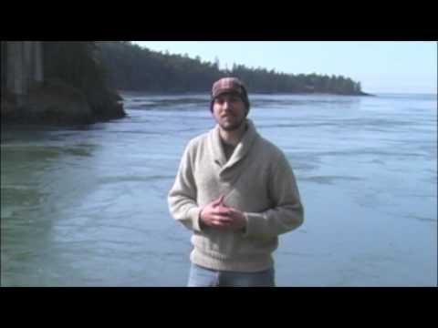 Live Ocean 'Tidal Currents'