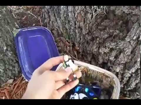 Geocaching Adventure #2 Part 1