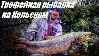 Трофейная рыбалка на Кольском.(Совсем недавно Андрей Питерцов вернулся с Кольского полуострова где был на трофейной рыбалке. Основной..., 2016-08-30T09:30:26.000Z)