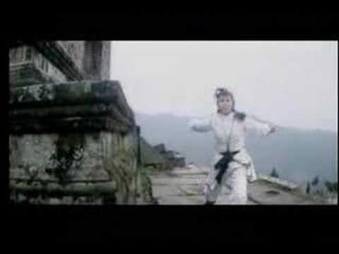 Wushu - Xu Xiang Dong & Lin Qiu Ping