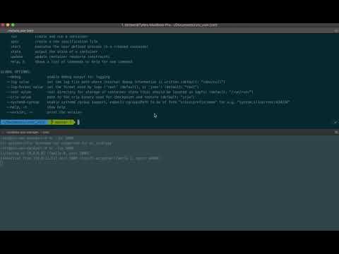 CVE-2019-5736 on PKS 1.3.1