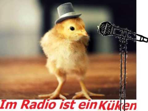 Im Radio ist ein Küken