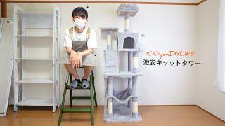 【保護猫活動準備】激安キャットタワーを組み立て&ご紹介|Mwpo