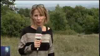 Perseidák, Palé - 2012.08.11. RTL Klub Híradó