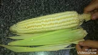 طريقة عمل الذرة البيضاء المقرمشة وفوائدها المذهلة Crispy Corn And Its Amazing Benefits Youtube