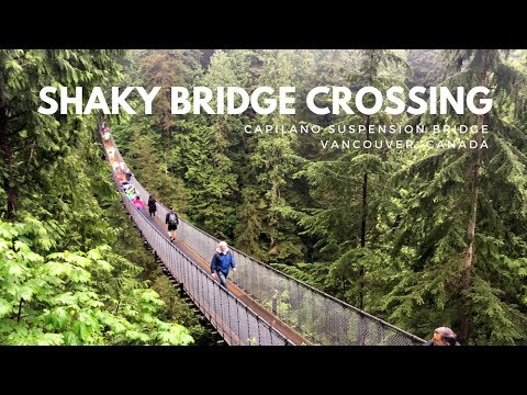 Walking the Capilano Suspension Bridge in Vancouver Canada | Alaska Cruise Excursion
