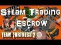 Steam trade escrow: TF2 with Bobson