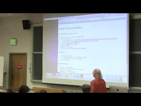 #4 Biochemistry Lecture (Amino Acids) from Kevin Ahern