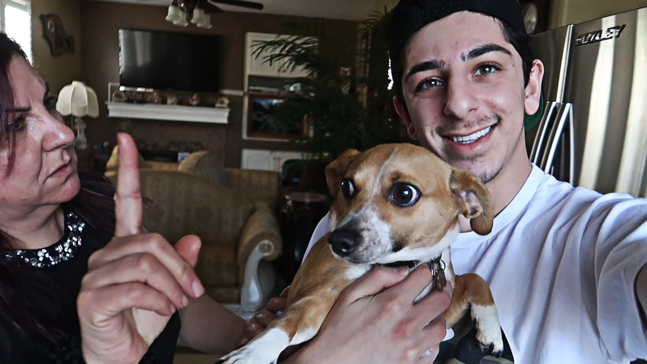 SURPRISING MY MOM WITH A NEW PUPPY