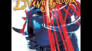 Funny Vibe - Living Colour