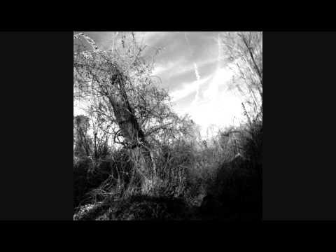 Harvey Milk - I Alone Got Up And Left