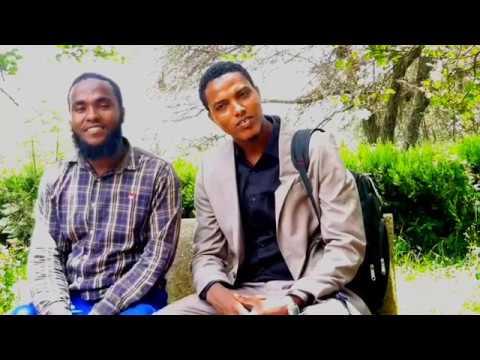Download Anas Muhammad Nashiidaa haareya TV Islaamaatiif share waliif godhaa jzkllkh;