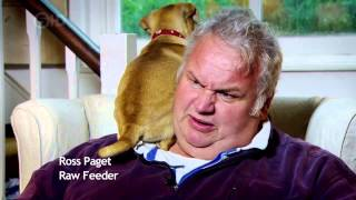 Channel 5 The Truth About Your Dogs Food 720p Hdtv X264 Aac