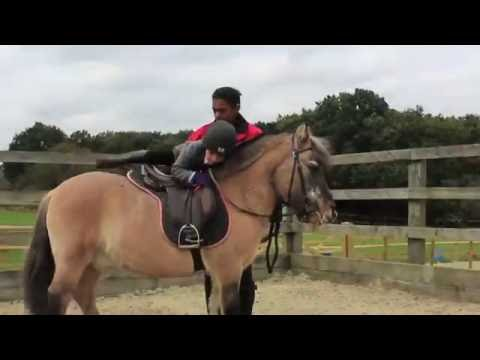 Trent Park Equestrian Centre Promotional Video