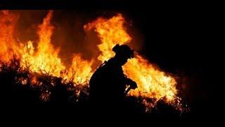 KALIFORNIEN: Waldbrand wurde wohl durch Brandstiftung ausgelöst