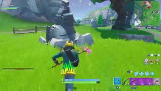 Fortnite: Trying to get one more victory
