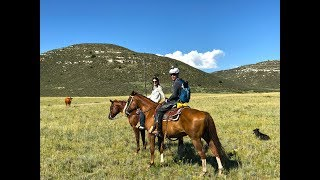 A Good ol' Wyoming Cattle Drive-Ryan and Ali Bike Across America-Ep 17