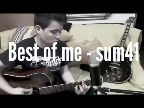 Sum41 - Best of me (acoustic cover  by Honza Dalecký)