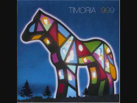 04 Un volo splendido   1999  Timoria
