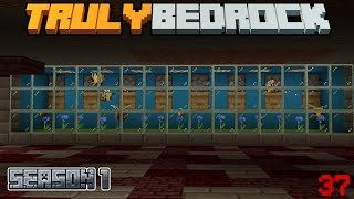 Truly Bedrock Episode 37: Honey farm, new recording talk, and comment library
