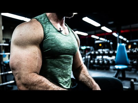 How To Get Big FREAKING Arms (BICEPS & TRICEPS WORKOUT)