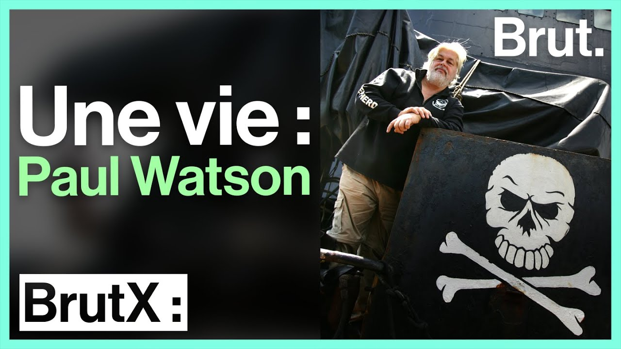 Une vie : Paul Watson