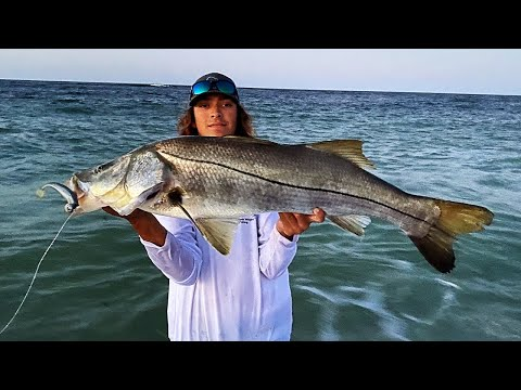 CATCHING GIANT SNOOK OFF THE BEACH ON LURES