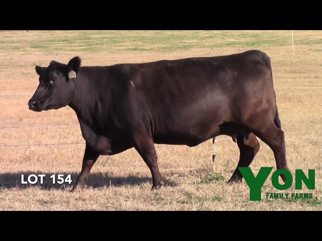 Yon Family Farms Lot 154