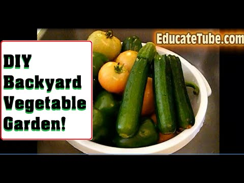 DIY Backyard Vegetable Garden from start to finish- Fresh Organic Homegrown Food
