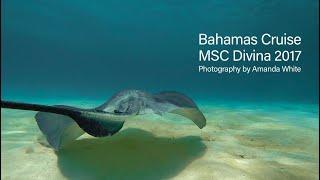 Bahamas Cruise February 2017