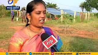 An Young Couple Leaves Software Jobs | Now Showing Natural Farming A Profitable One