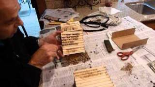 Opening Mason Bee Wood Trays with Crown Bees