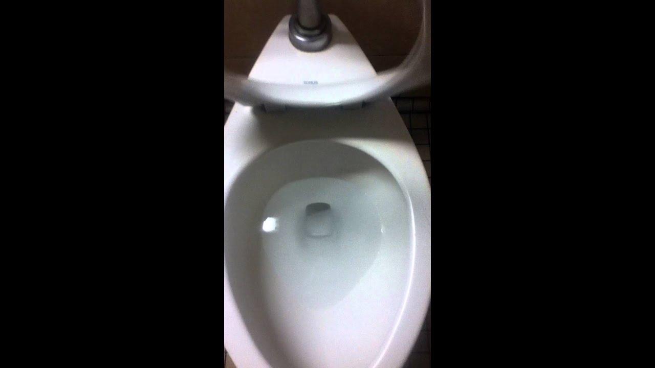Kohler Highcrest Toilet @ Mini Gourmet @ SJ, CA - YouTube