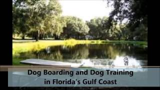 Dog Boarding And Dog Training, Von Asgard K9 Center Inc